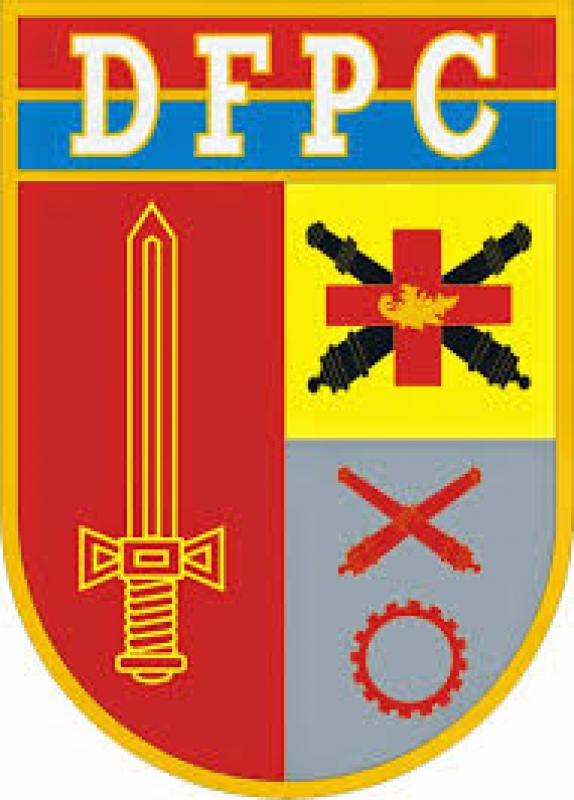 dfpc_5901eb1b0570b
